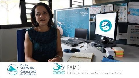 SPC Innovation: ReefLex, a web app on coastal fisheries and aquaculture legislation
