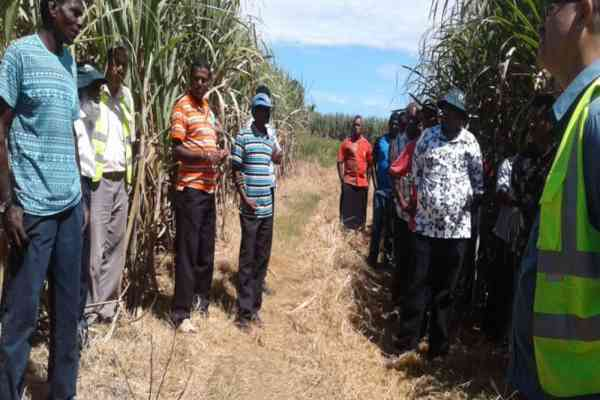 "Sugarcane farmer urges farmers to ""keep on learning"""