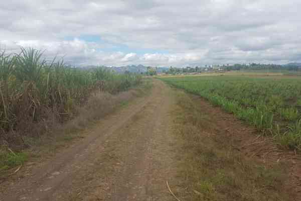 Cane Access Road upgrade to benefit 366 sugarcane farmers in Koronubu, Ba