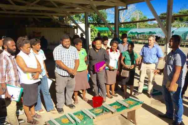 Agricultural Officers and Farmers Undergo Seed Production Training