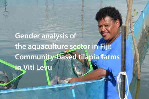Gender analysis of the aquaculture sector in Fiji: Community-based tilapia farms in Viti Levu