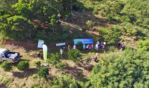 last replanting action in Fort Tereka, Noumea, 20th August 2016