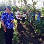 Agroforestry project to enhance value chain of selected crops