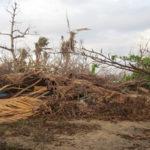 Cyclone Pam report released for Vanuatu