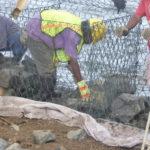 Zoom – Construction d'une digue pour protéger l'école élémentaire d'Awak
