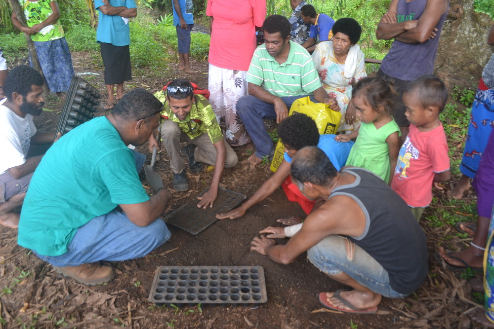 Zoom: Planting for purpose in Fiji