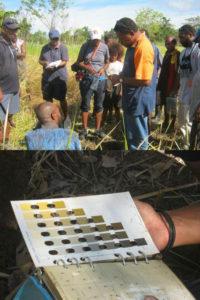 cccpir_png_soil_testing