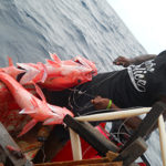 Data is key for sustainable Pacific fisheries