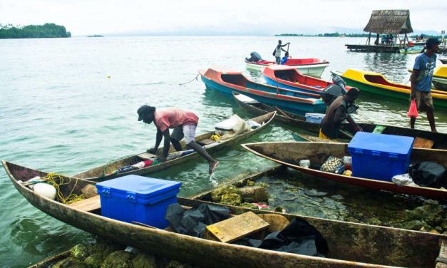 Reviving the focus on coastal fisheries in the Pacific region