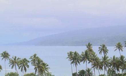 La réserve forestière de Taveuni