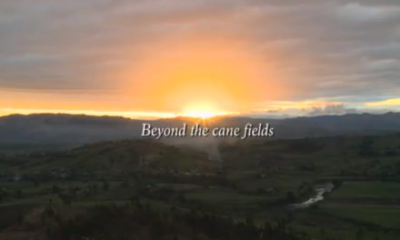 Beyond the cane fields