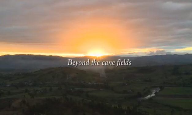 Au-delà des champs de canne à sucre