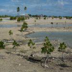 La Suède s'associe avec la CPS pour promouvoir le respect des droits fondamentaux dans le Pacifique