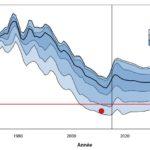 Le point sur le stock de thon obèse