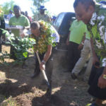 Reforest Fiji seedlings contribute to Cyclone Winston recovery