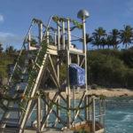Niue Tide Gauge