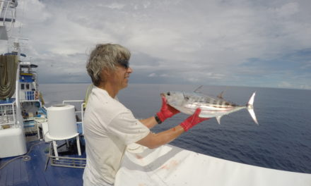 Pacific Community (SPC) Oceanic Fisheries Programme completes latest tuna tagging voyage