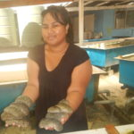Trailblazers: Conversations with Pacific women driving scientific advances in fisheries